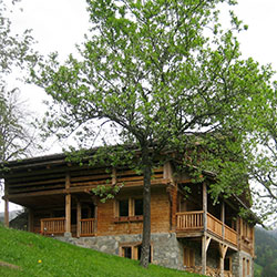 Chalets  (74)